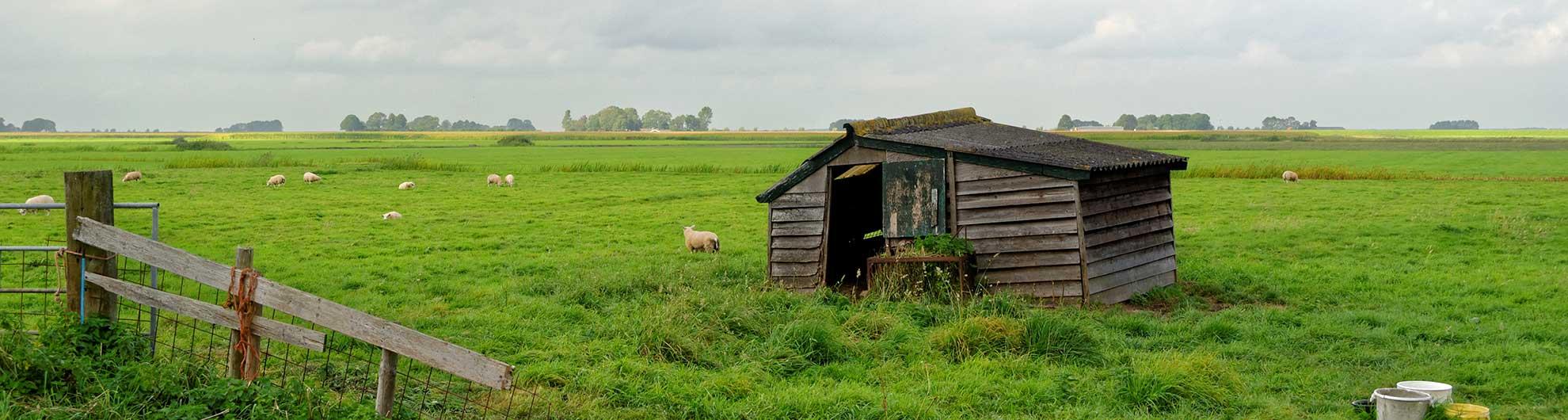 Buitengebied Kampen